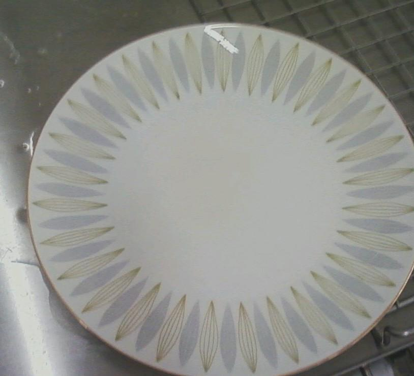 Plate damaged by fire and soot - After Photo