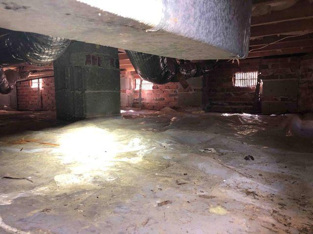 Crawl Space, Mount Pleasant, Charleston, SC, 29429