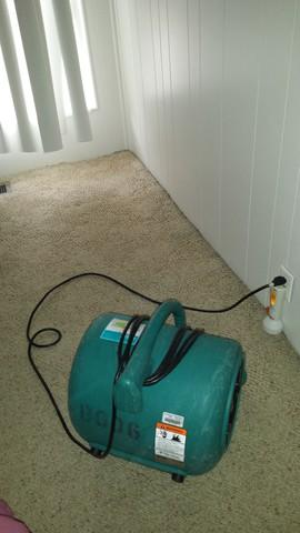 Water Damage Repair in Orange, CA