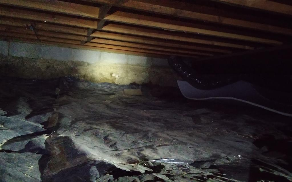 Crawl space insulation in Farmington Hills - Before Photo