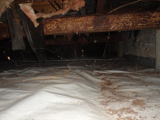 Crawl Space Encapsulated in Germantown, MD - Before Photo