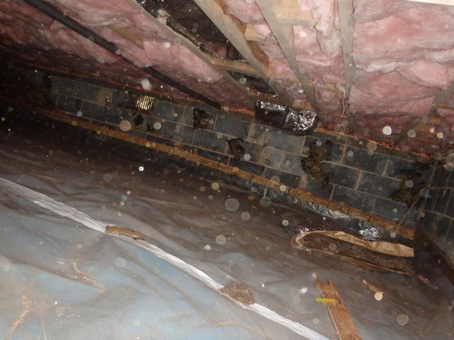 Crawl Space Insulation in Riverdale, MD