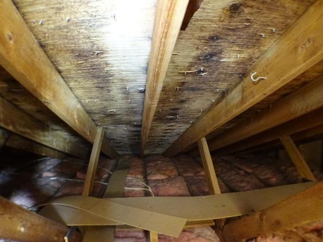 Amsterdam OH Attic Mold Removed