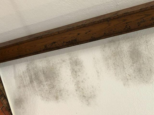 Mold Removal Wheeling, WV - Before Photo