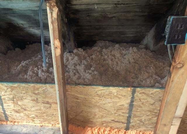 Attic Mold and Insulation - After Photo