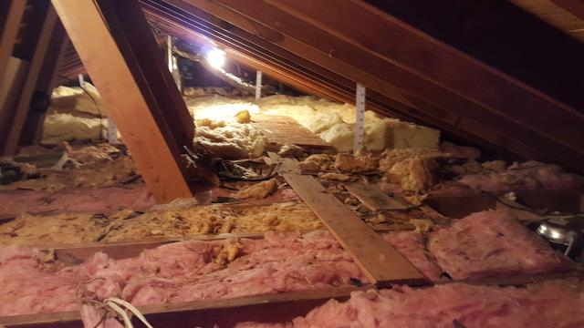Attic insulation in Pittsford, NY - Before Photo