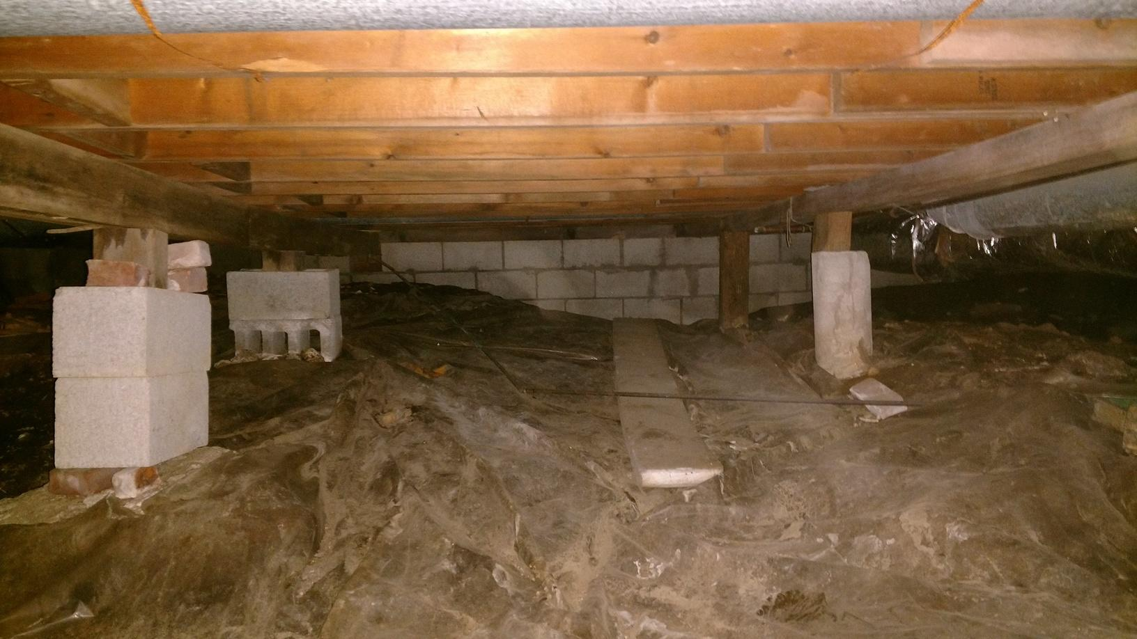 Crawlspace Clean-Up - Before Photo