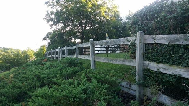 Paddock Fence Installation in Hamilton, VA - Before Photo