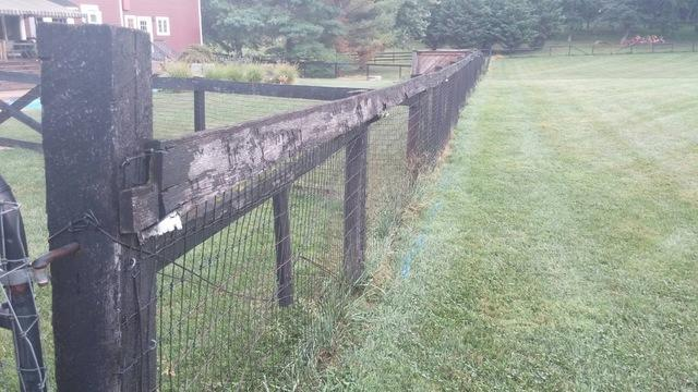 Before and After Paddock Fence installation, Bristow, VA