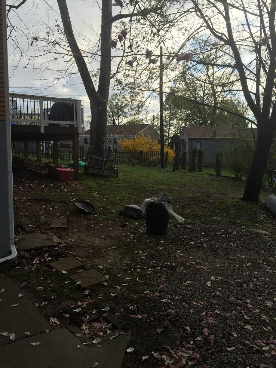 Rear Yard Chain Link Installation in Castle Shannon, PA - Before Photo