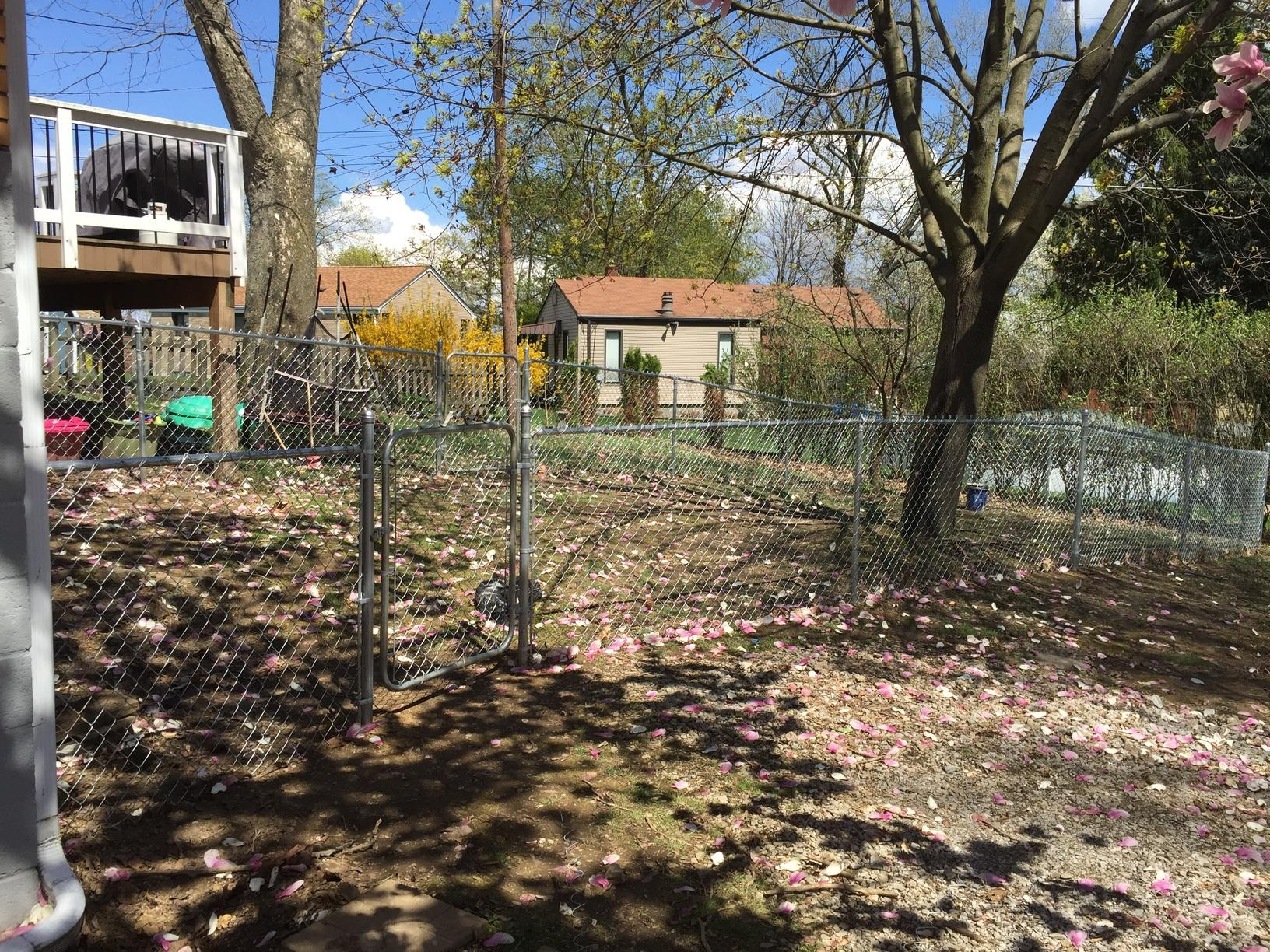 Rear Yard Chain Link Installation in Castle Shannon, PA - After Photo