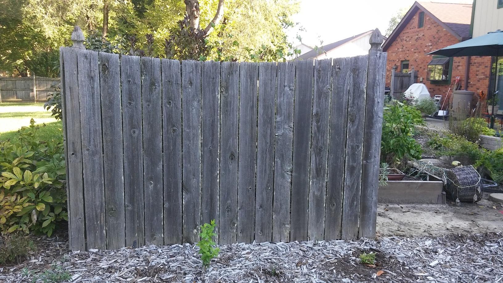 O'Fallon, IL Cedar Privacy Fence Installation - Before Photo