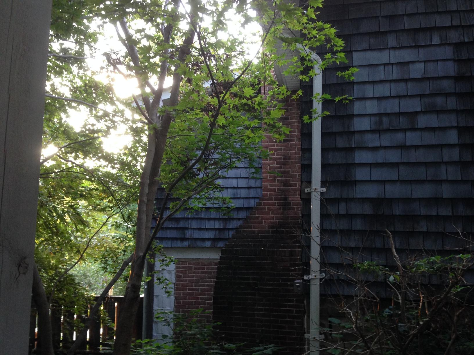Wood Shake Siding Replacement in Arnold, MD - Before Photo