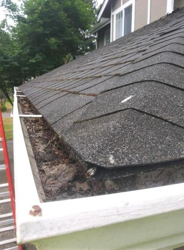 Gutter installation - Federal Way - Before Photo