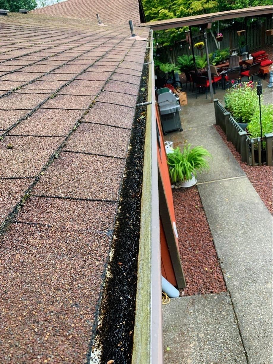 Valor Gutter Guards - Federal Way - Before Photo
