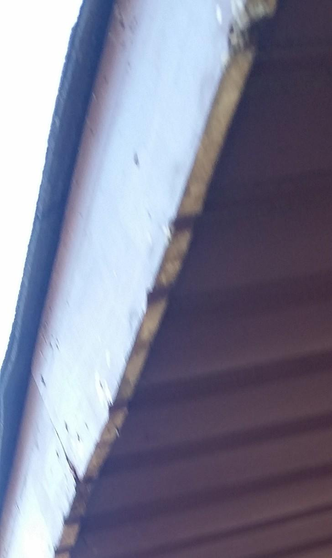 Garage Fascia Repair in Tinley Park, IL - Before Photo