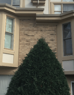 Downspout addition installed in Mokena, IL - Before Photo