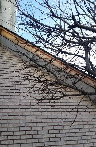 Aluminum Fascia - Siding Repair in Orland Park IL