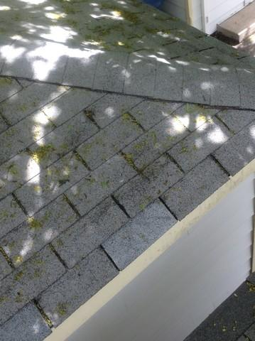 Hometown, IL Shingle Replacement Roof Repair