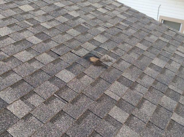 Shingle repair in Oak Forest, IL
