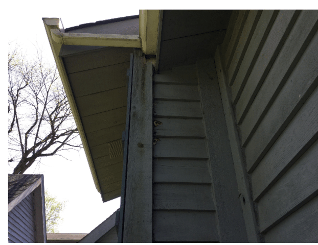 Frankfort IL Siding Repairs - Before Photo