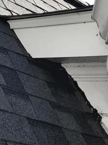 Roof Repair in Peachtree City, GA