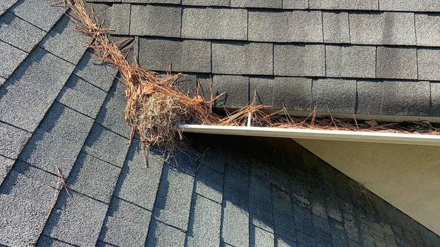 Gutter Guard Installation in McDonough GA - Before Photo