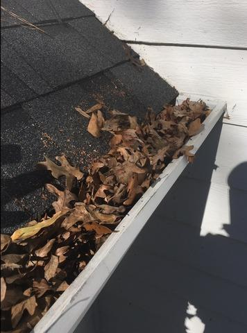 RainDrop Gutter Protection