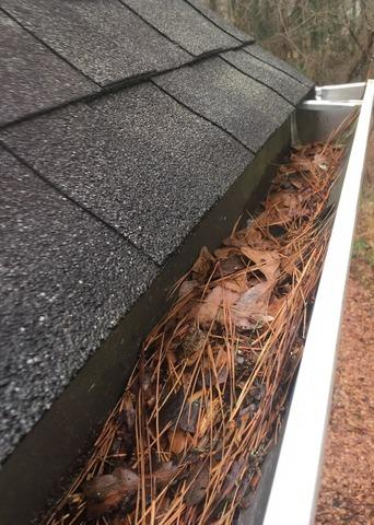 LeaFree gutter protection