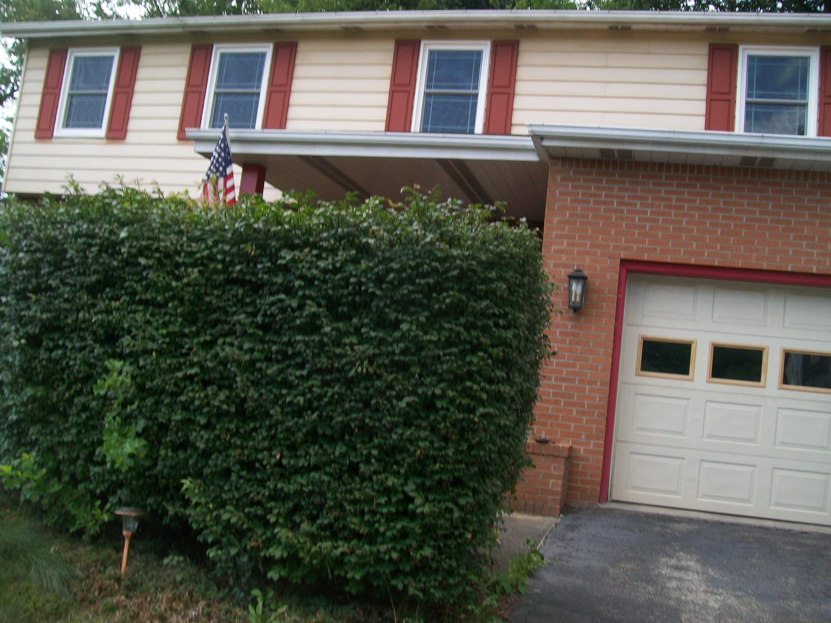 Full Home Window Replacement in Murrysville, PA! - After Photo