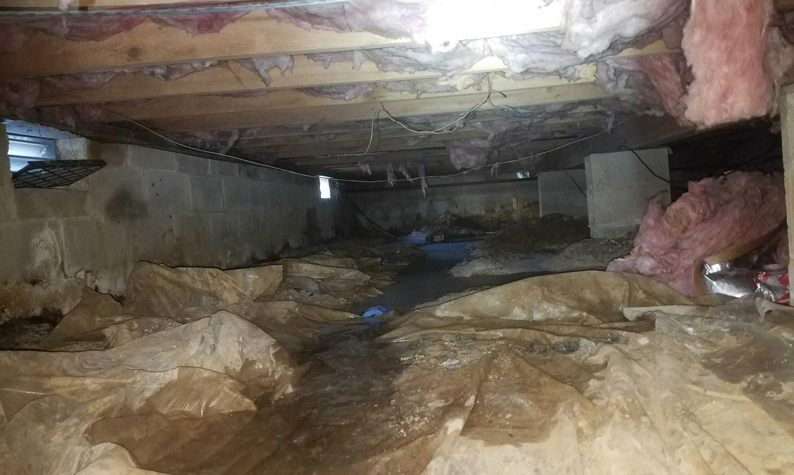 Moldy Remediation in Toms River, NJ - Before Photo