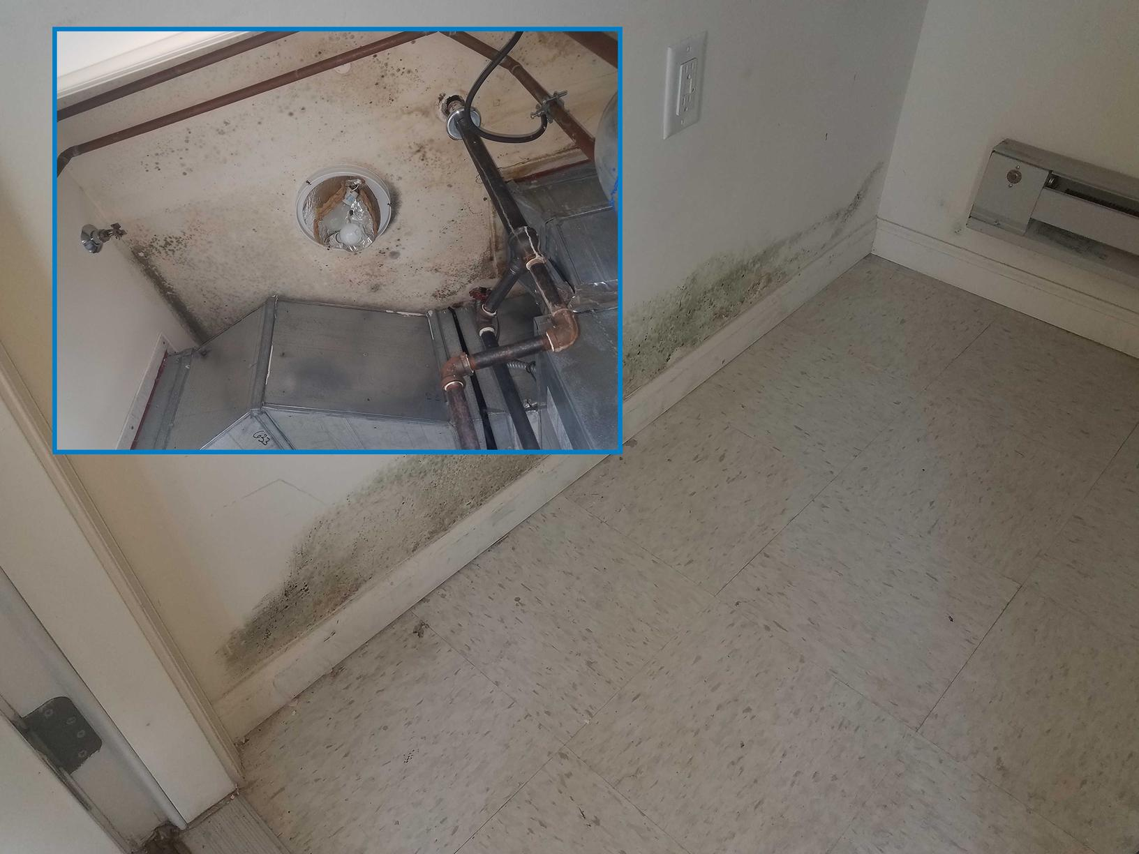 Moisture Leak Leads to Mold in Lakewood, NJ Apartment - Before Photo