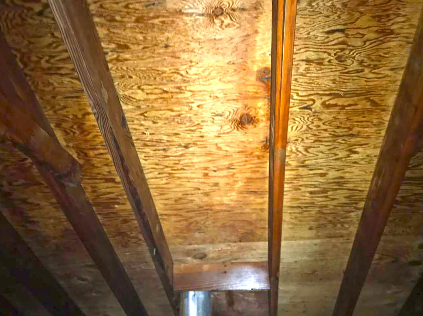 Mold Puts a Stop to the Sale of Home in Somerville, NJ - After Photo