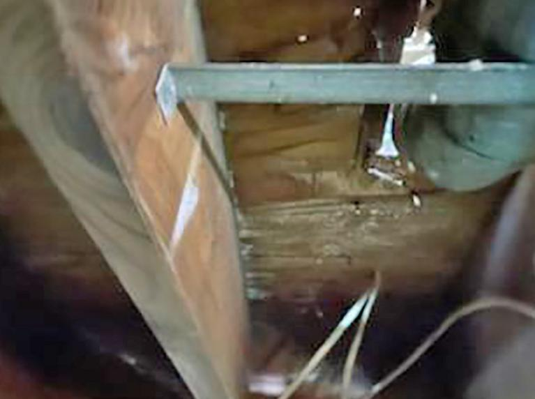 Flooded Crawl Space Causes Severe Mold Growth in Freehold, NJ - Before Photo