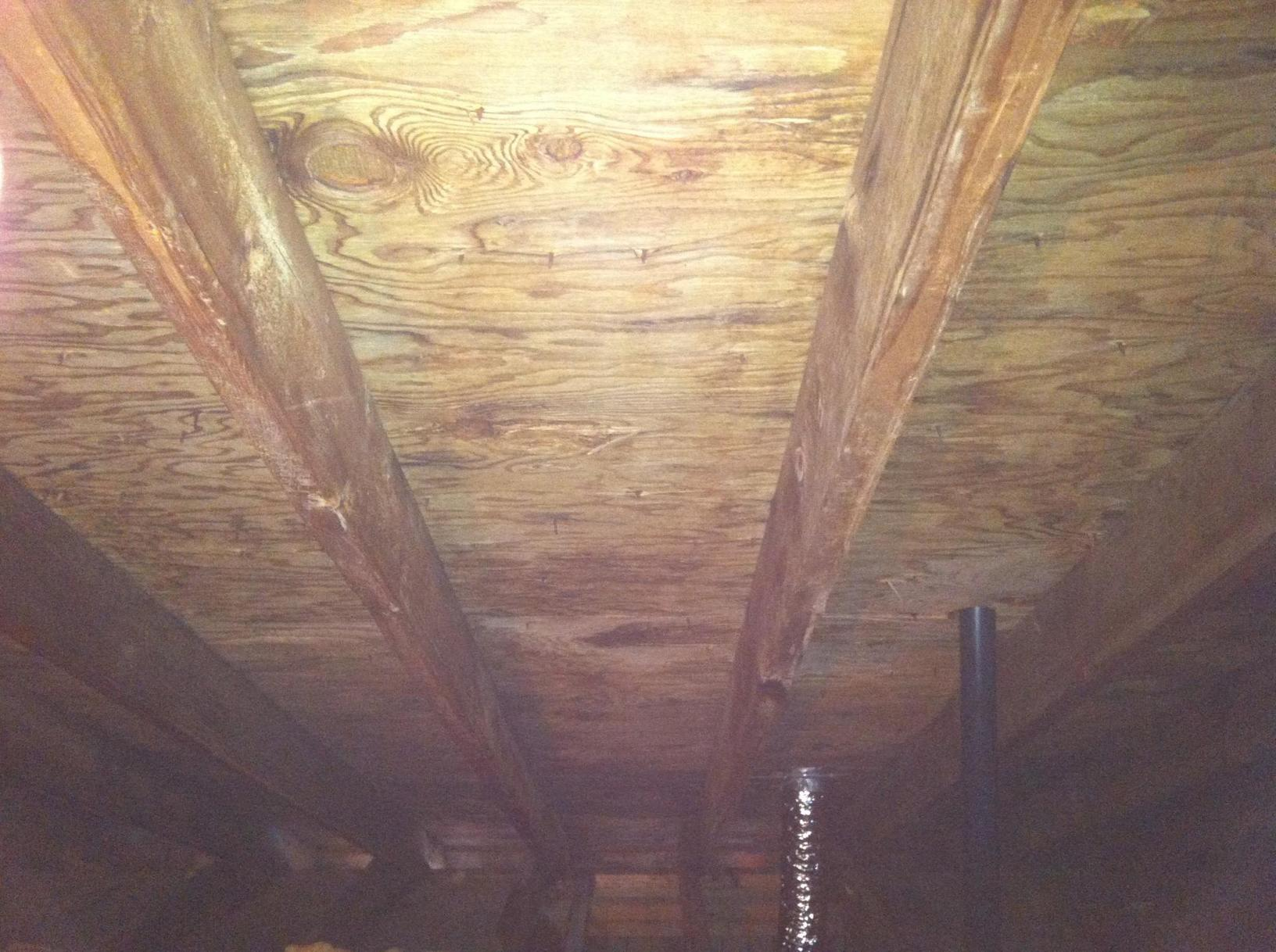 Bathroom Fan Causes Attic Mold in Kendall Park, NJ - After Photo