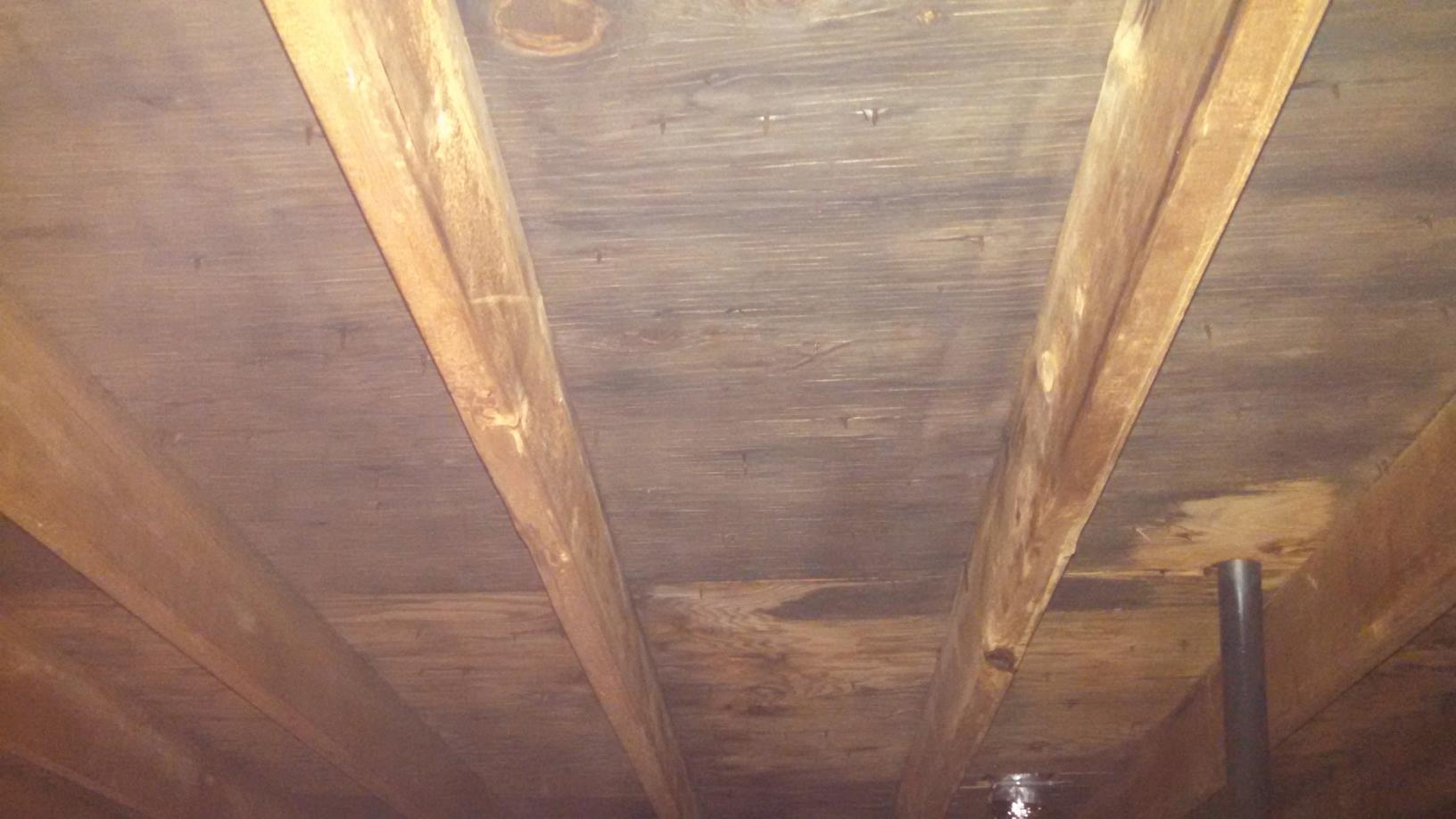 Bathroom Fan Causes Attic Mold in Kendall Park, NJ - Before Photo
