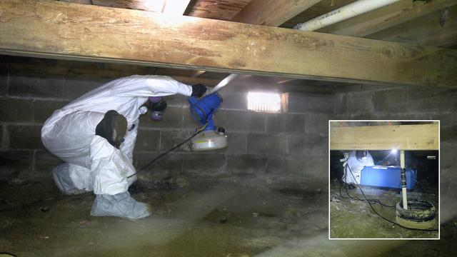 Full clean up of moldy crawl space - Englishtown mold removal and treatment services