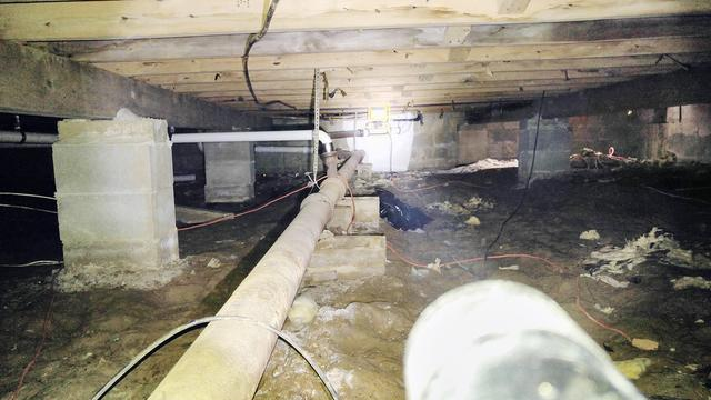 Moldy Crawl Space is Now Super Clean and Dry in Brick, NJ