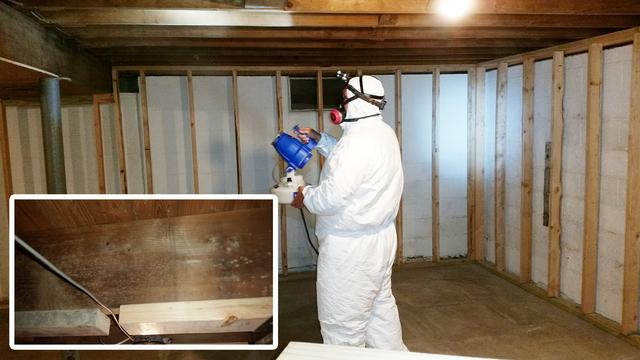 Mold on Basement Joists Removed in Marlboro, NJ
