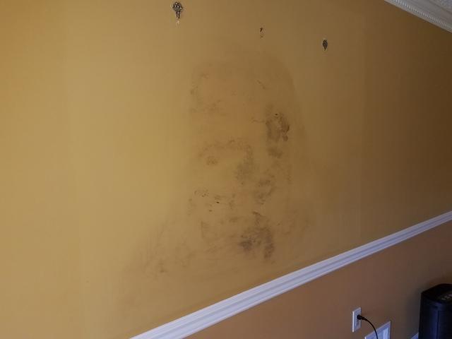 Mold Remediated in Shrewsbury, NJ