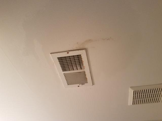 Moldy Drywall Removal in Matawan, NJ