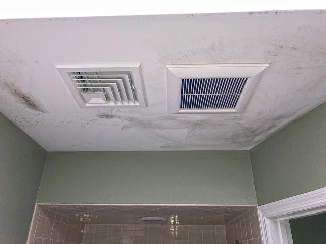 Improperly Ventilated Bathroom Leads to Mold in Freehold, NJ