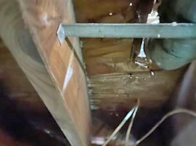Flooded Crawl Space Causes Severe Mold Growth in Freehold, NJ