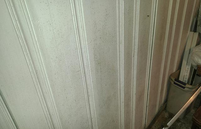 Groundwater Causes Mold Throughout Church in Asbury Park, NJ