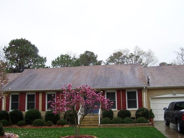 Roof and Shutter Replacement