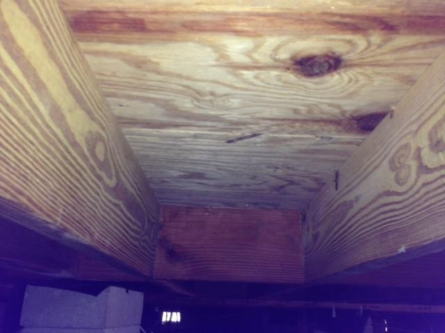 Mold Remediation in Dorchester, SC - After Photo
