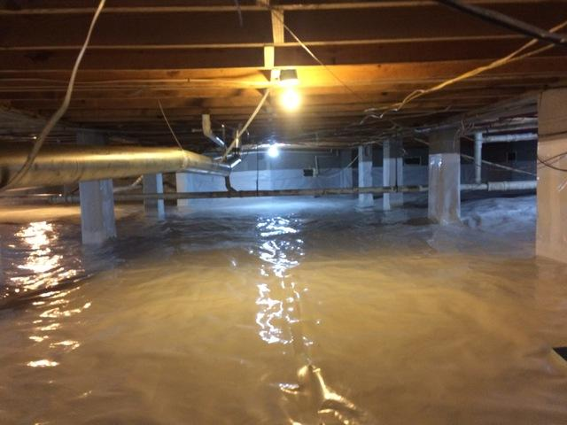 A Complete Crawlspace Transformation - After Photo