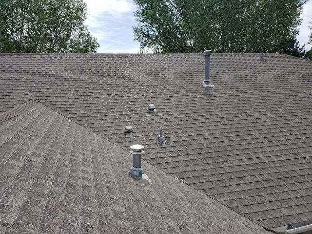 Hail Resistant Shingle in Westminster, CO