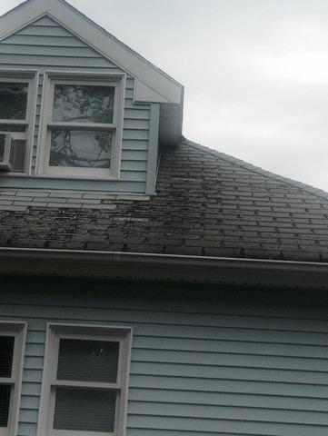 Danbury, CT - Wind Damaged Roof (Springdale Ave)