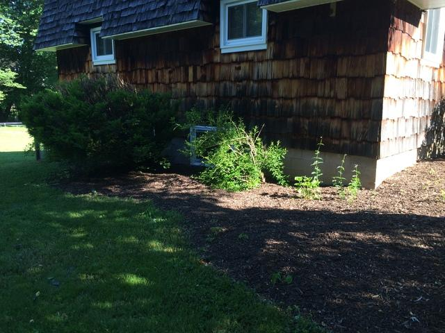 New Generator Installation = Comfort for a Williamson, NY couple